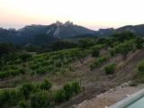 apero_sunset_a_suzette_lesconvivesdelafleur_4.jpg