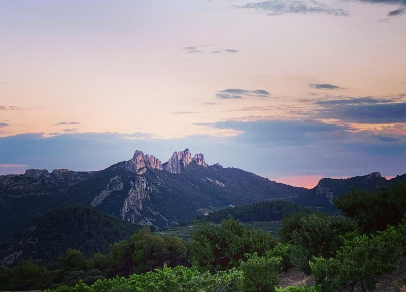 apero_sunset_a_suzette_lesconvivesdelafleur_9.jpg